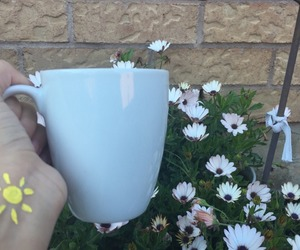 aesthetic and cup image