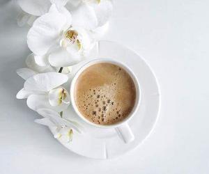 coffee, flower, and minimalism image