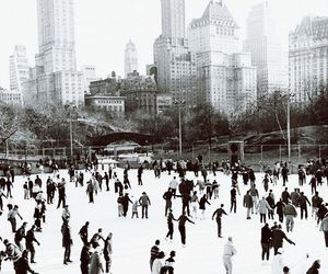 winter, new york, and skating image