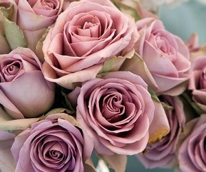 pink, rose, and bouquet image