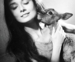audrey hepburn, deer, and black and white image