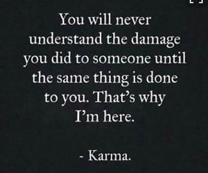 karma, damage, and quotes image
