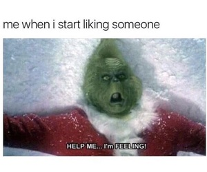 christmas, crush, and grinch image