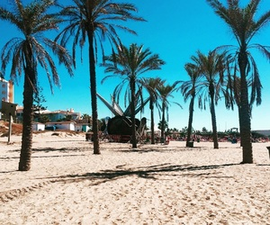 beach, marbella, and palm image