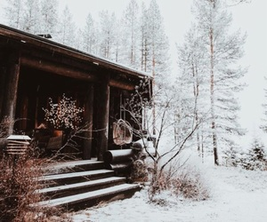 cabin, forest, and future image
