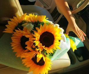 flowers, sunflowers, and love image