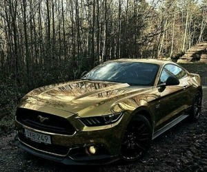 car, gold, and mustang image