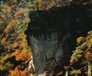 日本, 紅葉, and 群馬県 image