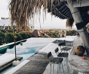 goals, palms, and pool image
