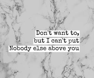 quotes and Lyrics image