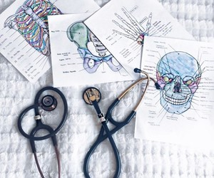 study, doctor, and medical image