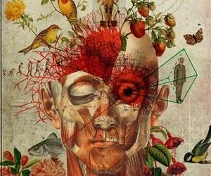 anatomia, wallpaper, and papel de parede image