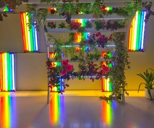 rainbow, flowers, and rose image