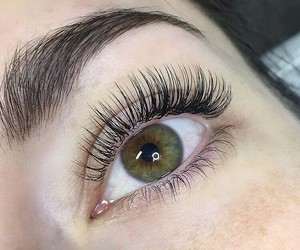 lashes and lashextensions image