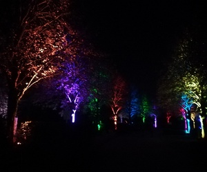 colours, light, and night image