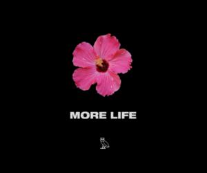 Drake and more life image