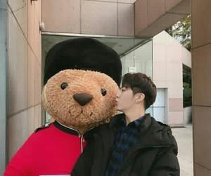 asian, asian boy, and bear image
