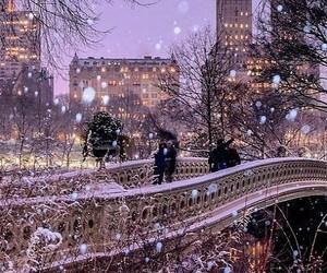 snow, city, and night image