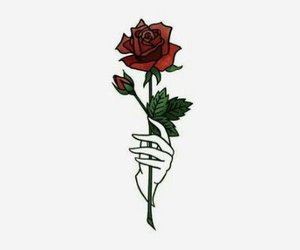 SHINee, Jonghyun, and rose image