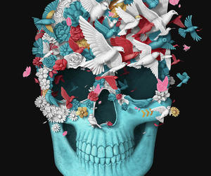animals, beautiful, and skull image