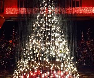 christmas, pretty, and holiday image
