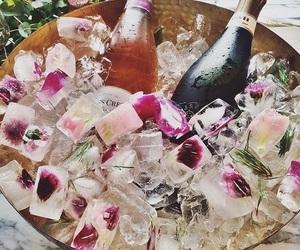 Bebidas, rose, and copas image