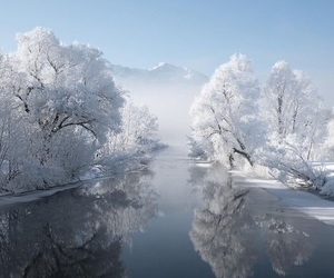 winter, nature, and cold image
