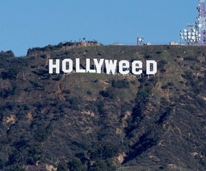 hollyweed, hollywood, and weed image
