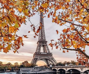 adventure, couples, and eiffel tower image