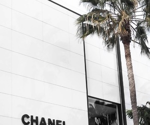 chanel, girl, and glam image