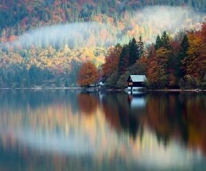 autumn colours, fog, and hut image