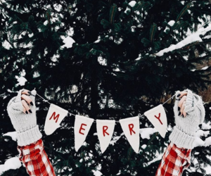 winter, christmas, and merry image