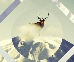 deer, mountain, and background image