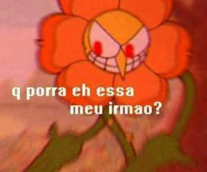 brazilian, facebook, and flower image