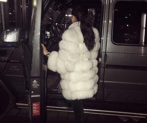 car, drive, and fur image