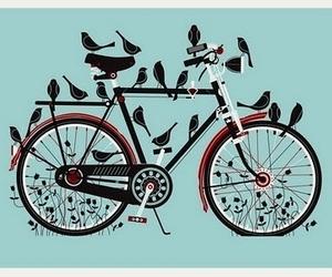 bird, bike, and bicycle image