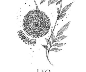 Leo, zodiac, and astrology image