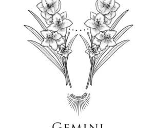 horoscope, gemini, and zodiac image