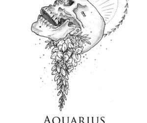 aquarius, funny, and quotes image