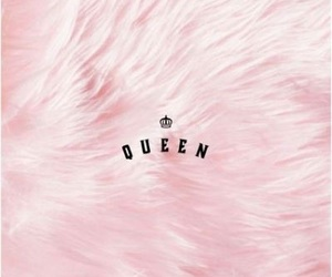 fur, pink, and Queen image