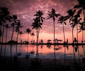 sunset, beach, and nature image