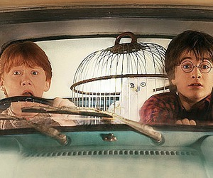 the chamber of secrets image