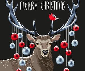 christmas, new, and winter image