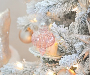 blush and winter image