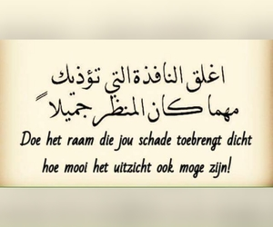 arabic, dutch, and indie image