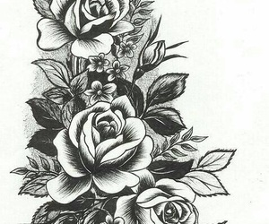 flowers, drawing, and rose image