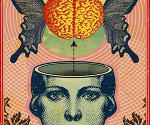 brain, butterfly, and art image