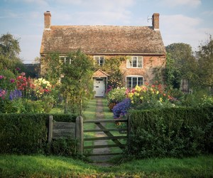cottage, flowers, and garden image