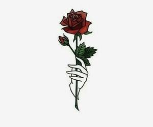 Jonghyun, SHINee, and rose image