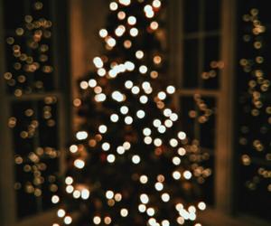 christmas, lights, and christmastree image